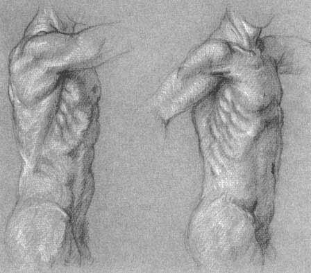рисования фигуры человека